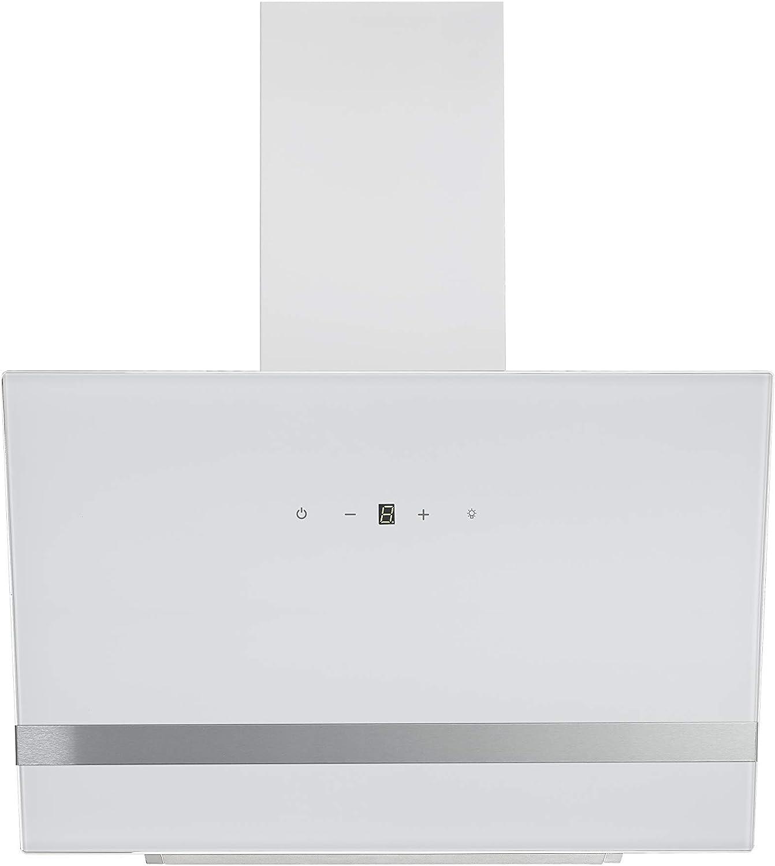 Respekta - Campana extractora (cristal, LED, 60 cm), color blanco: Amazon.es: Grandes electrodomésticos