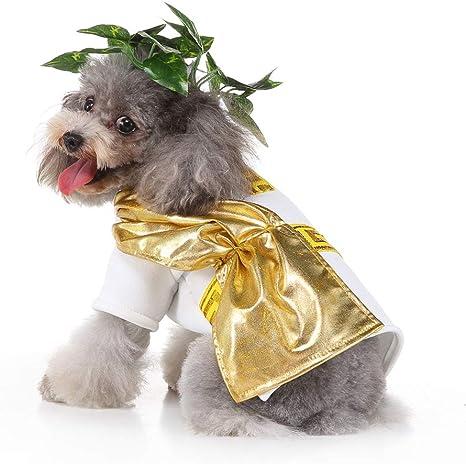 HYPETY Ropa para Mascotas Navidad Disfraz de Perro Perro Roma Toga ...
