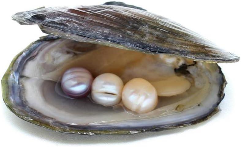 Agua dulce vacuum-pack Oyster Wish perlas, Pearl mejillones ...