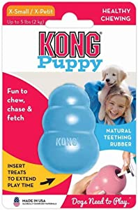 Best Dog Toys for Yorkies