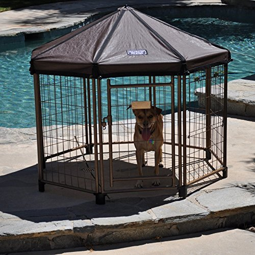 Advantek Original Pet Gazebo Small (Open Gazebo)