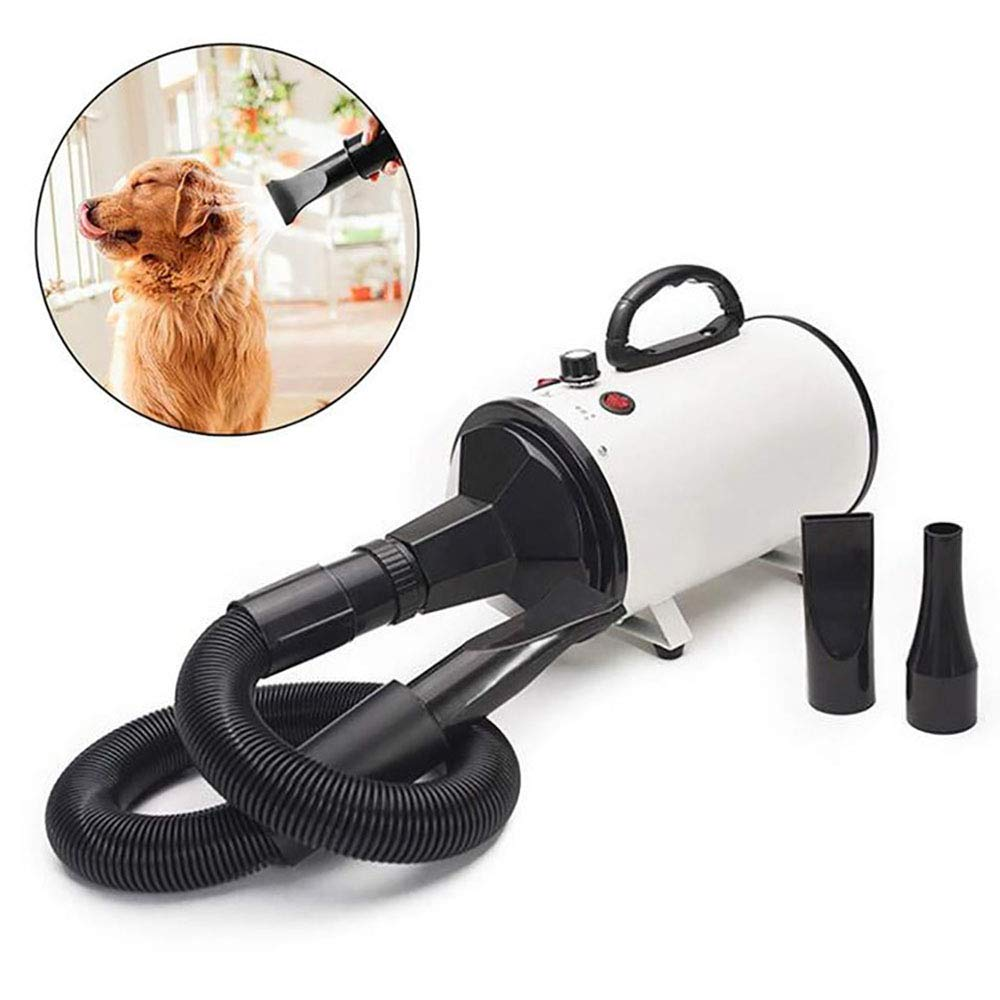 FXQIN 2000W Dog Hair Dryer Quiet Cat Grooming Dryer, Adjustable Speed & 3 Different Nozzles, For Large And Small Animals (White)