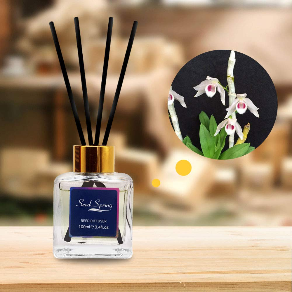 binca vidou Seed Spring Reed Diffuser Set, White Musk Air Aromatherapy Diffusers for Bedroom Living Room Office Gift Idea & Stress Relief 100 ml/3.4 oz by binca vidou (Image #3)