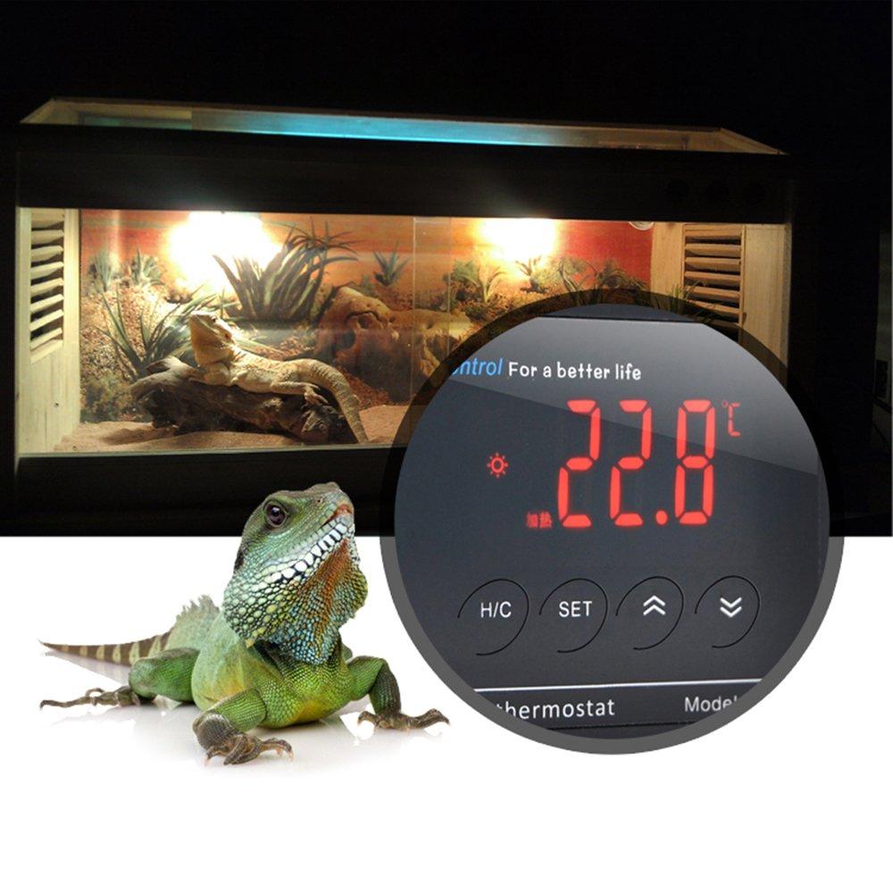 controlador de temperatura Electr/ónico Digital para ba/ñera movimientos Fish tank//reptil//Tortuga syyl term/ómetro Electr/ónico con pantalla LCD y Sensor NTC Termostato Electr/ónico para acuario