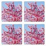 MSD Square Coasters Non-Slip Natural Rubber Desk Coasters design: 34930883 Ceiba speciosa pink flowers