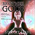 The Way of the Brother Gods: The Malja Chronicles, Book 3 | Stuart Jaffe