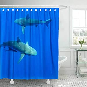 Douecish 72X78 Shower Curtain, Shower Curtain Sharks Hawaii Oahu Cool Shower Curtain with Hooks Waterproof Eco-Friendly Long Shower Curtain for Bathroom