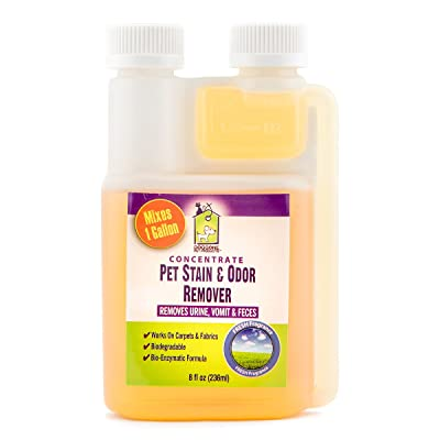 Doggone Pet Products Pet Urine Stain & Odor Enzymatic Concentrate Permanently Eliminate Dogs & Cats Vomit