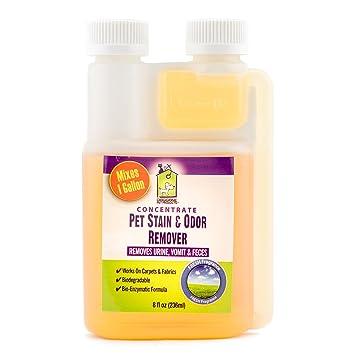 Pet orina Manchas y olor enzimática Concentrate por Doggone mascota productos – permanentemente eliminar perros &. Pasa el ...