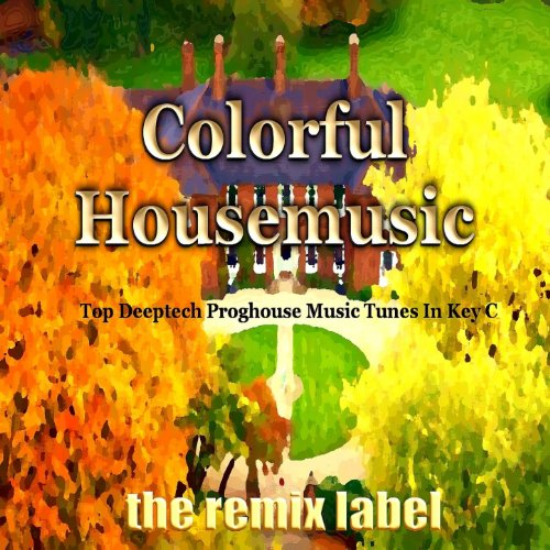 Colorful Housemusic (Top Deeptech Proghouse Music Tunes In Key C)