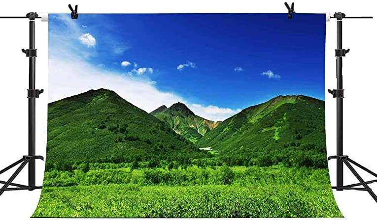 Blue Sky Photography Background Snow Mountain Backdrop Green Grasses Natural Landscape Holiday Travel Nature Scenery Photo Studio Backdrop Wedding Themed Party Backdrop 10x7ft E00T9426