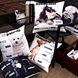 Phantoscope-Animal-Series-Decorative-Throw-Pillow-Case-Cushion-Cover-18x-18