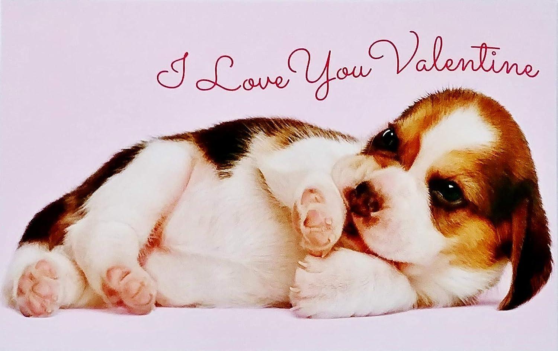 BIRTHDAY CARD WIFE HUSBAND GIRLFRIEND BOYFRIEND I love you as much as the dog