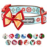 """Blueberry Pet 14 Patterns Moments of Joy Vintage Snowflakes Christmas Designer Dog Collar, Small, Neck 12""""-16"""", Adjustable Collars for Dogs"""