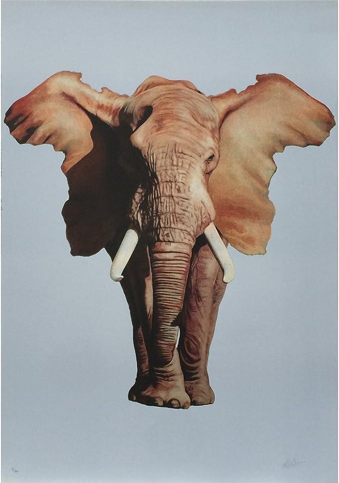 Litografía Ron English - African Elephant: Amazon.es: Hogar