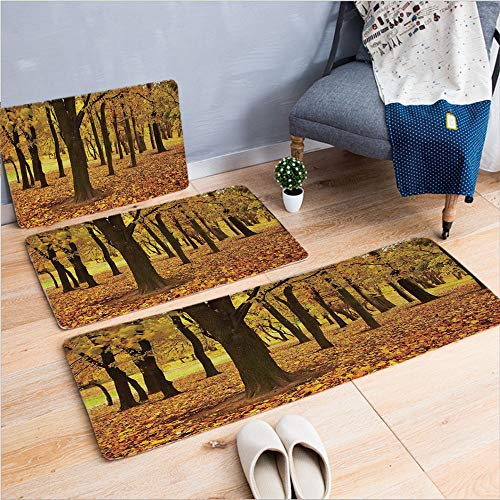 (3 Piece Non-Slip Doormat 3d print for Door mat living room kitchen absorbent kitchen mat,Covered Ground Autumn Forest Nature Picture,Amber,15.7