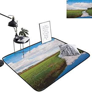 lacencn Landscape Outdoor Door mat Reflective Calm River Scenery Meadow Grass Clouds Wildflowers Trees Shrubs Rug Super Soft and Cozy for Dining Room Home Bedroom, W29 x L39 Green Blue White