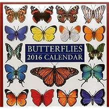 2016 Calendar: Butterflies