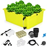 GROWNEER 6 Sites Hydroponics Grower Kit Household DWC Hydroponic System Growing Kits with Air Pump and Hydroponics Tools for
