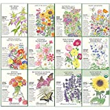 """Botanical Interests""""Bees, Butterflies, and Hummingbirds"""" Flower Seed Collection - 12 Packets with Gift Box"""