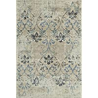 5x7 Neutral Rug Transitional Living Room Carpet, 4-Foot...