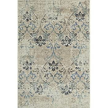 Amazon Com Super Area Rugs 5x7 Neutral Rug Transitional