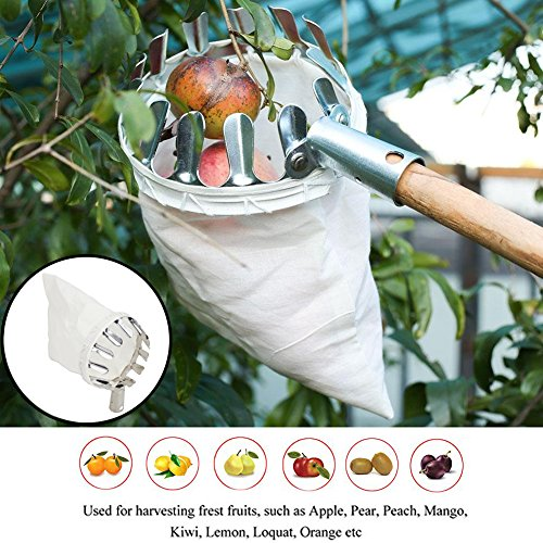 fruit picker - 7