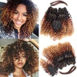 N&T Extensions Hair Ombre Color Kinky Curly 4 Bundles With Closure and Hair Bang Curly Weaves (8 10 12 14)