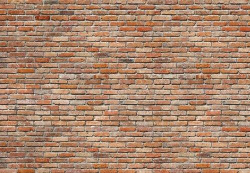 Komar 8 741 8 Panels 12 Foot 1 Inch By 8 Foot 4 Inch Bricks Wall Mural    Faux Brick Paneling   Amazon.com