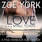 Love in a Small Town: The Soldier's Second Chance: Pine Harbour, Book 1 | Zoe York