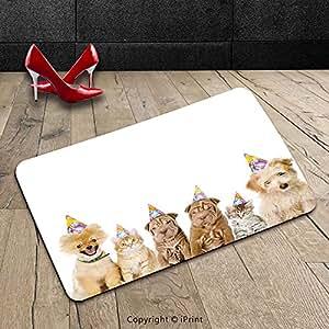 Custom lavable Felpudo, decoración para niños refugio perros Terrier gatos con gorros de cono, parte tema imagen multicolor interior/al aire libre Felpudo alfombra alfombra alfombra