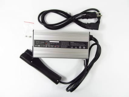 Amazon.com: 48 V para RXV carro de golf Cargador de batería ...