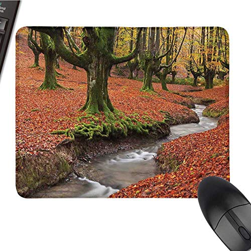 - LandscapeE-Sports Gaming Mouse PadFlowing Stream Colorful Autumn Forest Leaves Gorbea Natural Park SpainNonslip Rubber Base 9.8