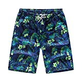 COOCOl 2 Pieces Summer Shorts Men's Loose Shorts Casual Board Shorts Cotton Lov