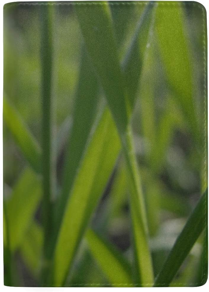 Maxm Grass Form Plant Field Leather Passport Holder Cover Case Travel One Pocket