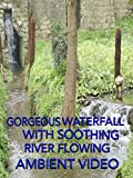 Gorgeous Forest Waterfall with Soothing River Flowing Ambient Video