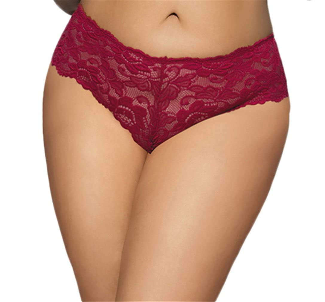 M-6XL Panties Lace Underwear Mesh Bikinis,Plus Size YouYaYZAI Women
