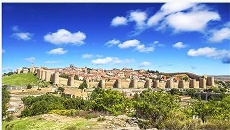 ZZXSY Puzzle Educa 1000 Piezas Vista Panorámica De La Histórica Ciudad De Ávila Castilla Y León España Adecuado para Regalos De Año Nuevo: Amazon.es: Hogar