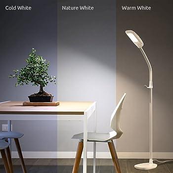 Aglaia LED Reading Floor Lamp