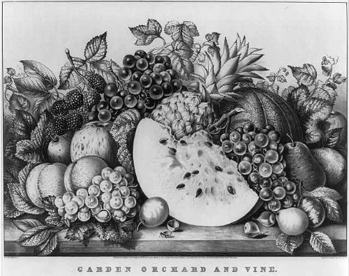 Calendar Currier & Ives Prints (Photo: Photo of Garden orchard,vine,c1867,Currier & Ives,pinapple,pear,peaches,grapes)