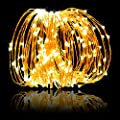 Weico LED String Lights 99 ft 300 LEDs Dimmable with Remote Control Waterproof Decorative Lights for DIY Bedroom, Patio, Garden, Gate, Yard, Party, Wedding (Copper Wire Lights, Gorgeous Warm White)