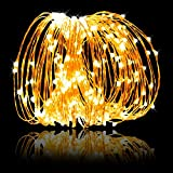 LED String Lights 99ft 300 LEDs Dimmable with Remote Control, Waterproof Starry Lights for DIY Bedroom, Patio, Garden, Gate, Yard, Party, Wedding (Copper Wire Lights, Warm White)