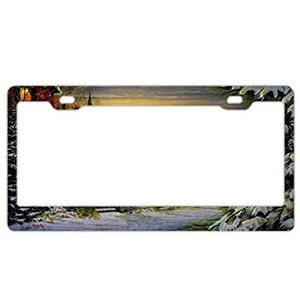 Amazon.com: Zoomber Winter Cardinals Farm License Plate Frames,Cute ...
