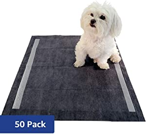 Amazon Brand - Solimo Super Absorbent Puppy Pads, Unscented (Regular, Large, X-Large)