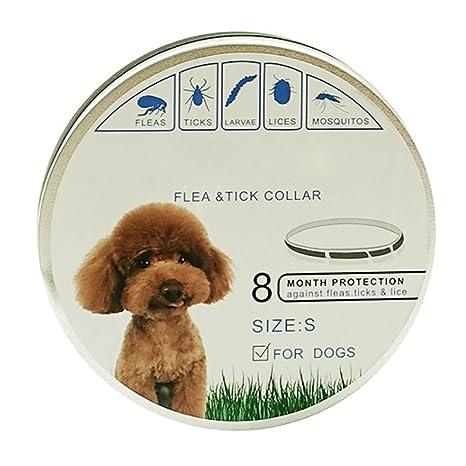 Cutelove - Collar de pulgas y garrapatas para Mascotas, Perros, Gatos, Impermeable y
