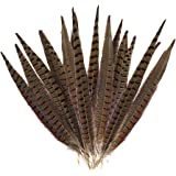 Outuxed 15pcs Natural Pheasant Tail Feathers for Crafts Pheasant Tails 12-14inch(30-35cm) Party Decorations