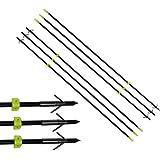 6pcs Fishing Arrow Slingshot 155mm Steel Bowfishing Broadhead Barb Points NEW