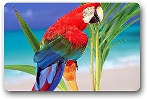 Hi,Doormat Parrot Doormat Outdoors/Indoor Machine Washable Home Floor Mats Rugs 23.6 x 15.7 Inches