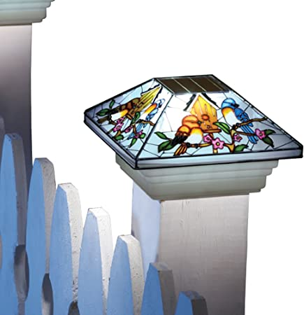 Amazon Com Collections Etc Solar Fence Stained Glass Effect Bird Post Light Cap Garden Outdoor