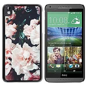 For HTC DESIRE 816 Case , Roses Bush Pink White Flower - Diseño Patrón Teléfono Caso Cubierta Case Bumper Duro Protección Case Cover Funda